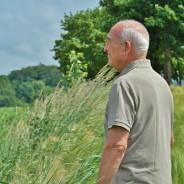 Ejercicios físicos buenos para personas mayores